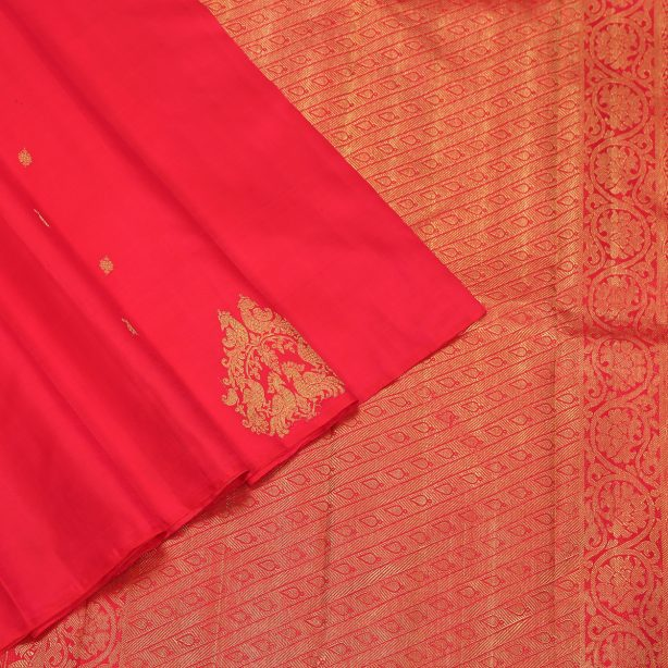 Borderless Silk Sarees